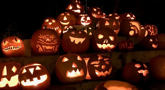 Pumpkins in the Park a spooky success
